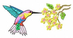 Colibri avec Fleurs