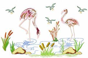 Flamingos couple