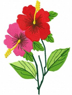 Bouquet Hibiscus