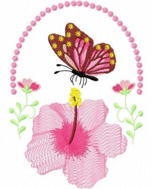 Hibiscus papillon