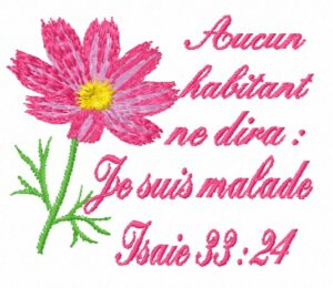 Texte biblique – Isaie 33:24
