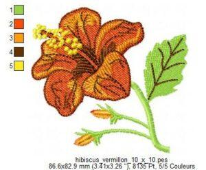 Hibiscus vermillon