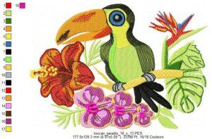Toucan Paradis
